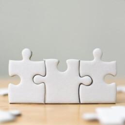 Integration Fusion PMI